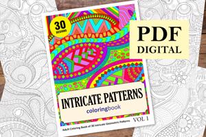 Intricate Patterns Coloring Book for Adults